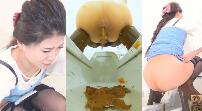 Pooping Woman in Public Toilet and Spy Camera トイレスパイカメラのうんち BFSR-231 2019 (1920x1080 FullHD)