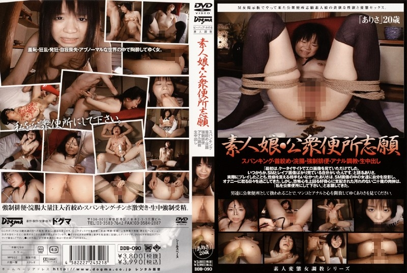 Amateur Girl Applicants And Public Toilet 素人少女志願者と公衆トイレ DDB-090 2020 (640x480 SD)